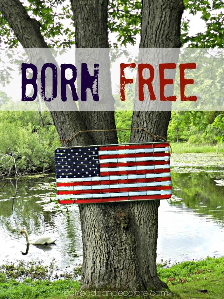 Born-Free-21-767x1024