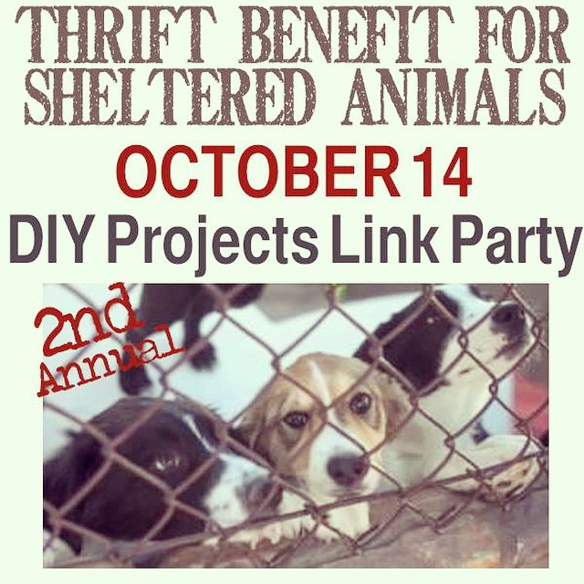 Don't forget to stop by the blog to check out my project for the #thriftbenefit for sheltered animals!! Such a great cause!!