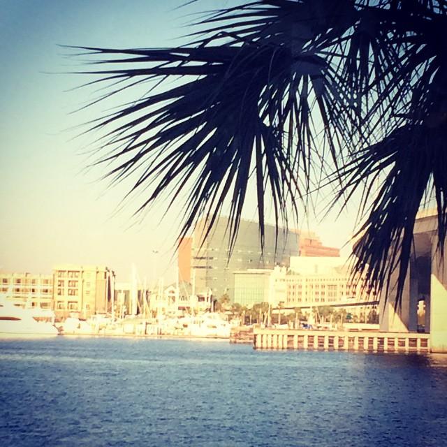Always love this view! #charlestonsc